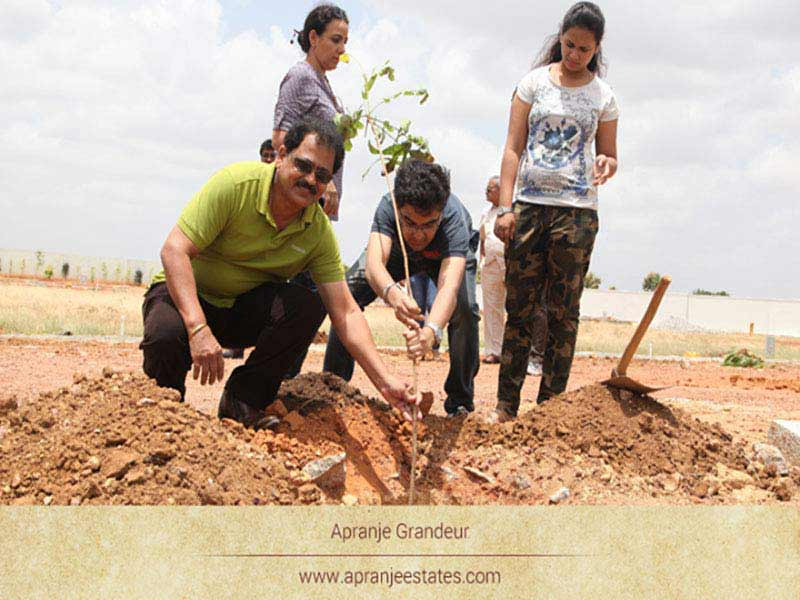 Apranje Estates Tree Planting